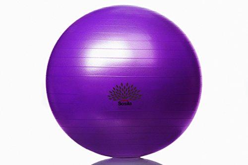 Sosila Anti-Burst Gymnastikball, Yogaball, Pilatesball, Fitnessball, Sitzball mit Pumpe, rutschfest, berstsicher von 65cm und 75cm, 150kg Maximalbelastbarkeit, Pezziball Swissball als Fitness Kleingeräte und Balance Stuhl, ideal für Rehasport, Balanceübungen, Koordinationsübungen, Schwarz, Lila, Pink und Blau (Lila, 65cm) - 2